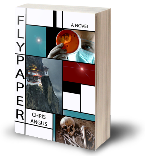 Flypaper, a novel by Chris Angus
